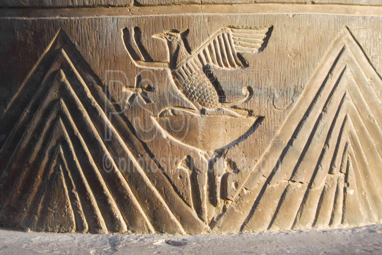Egyptian bird hieroglyphics - photo#3