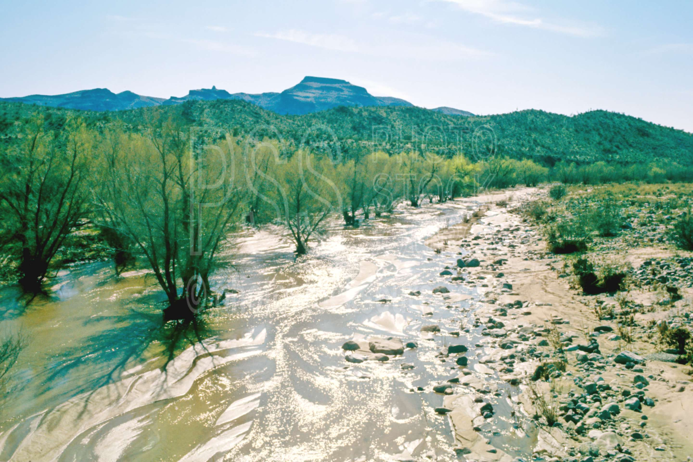 Water in the Wash,creek,dry wash,usas,nature