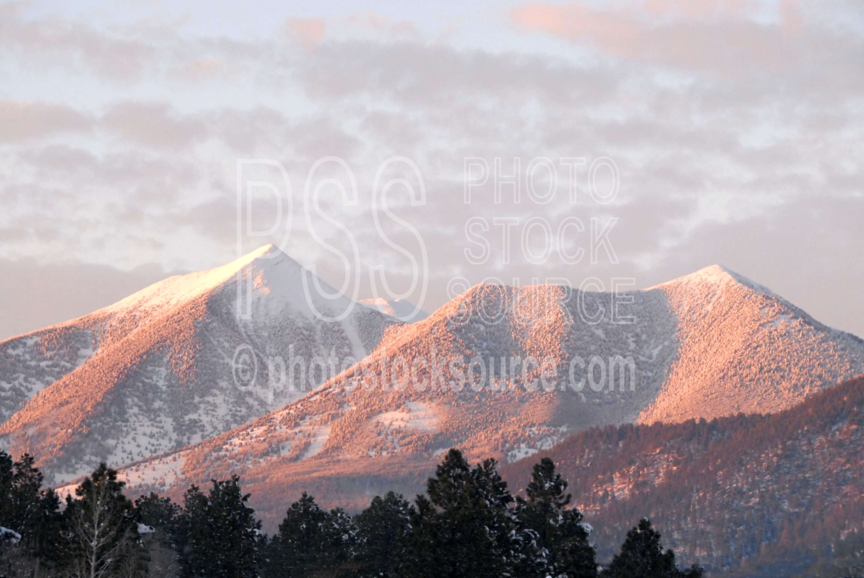 Snow on The Peaks,san francisco peaks,the peaks,volcano,mountain,sunset,cold,winter,nature