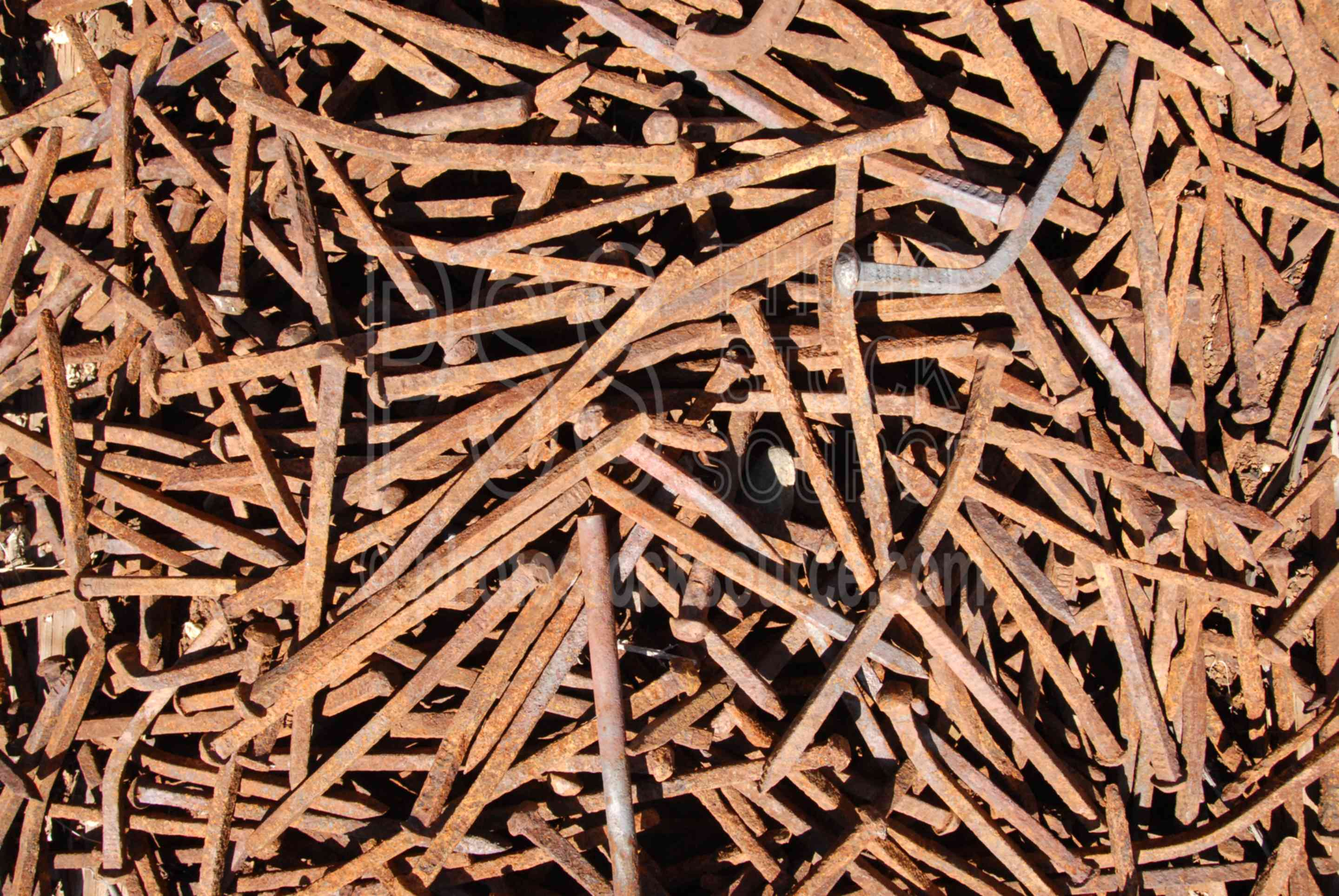 Rusty Nails,iron,metal,nails,rust