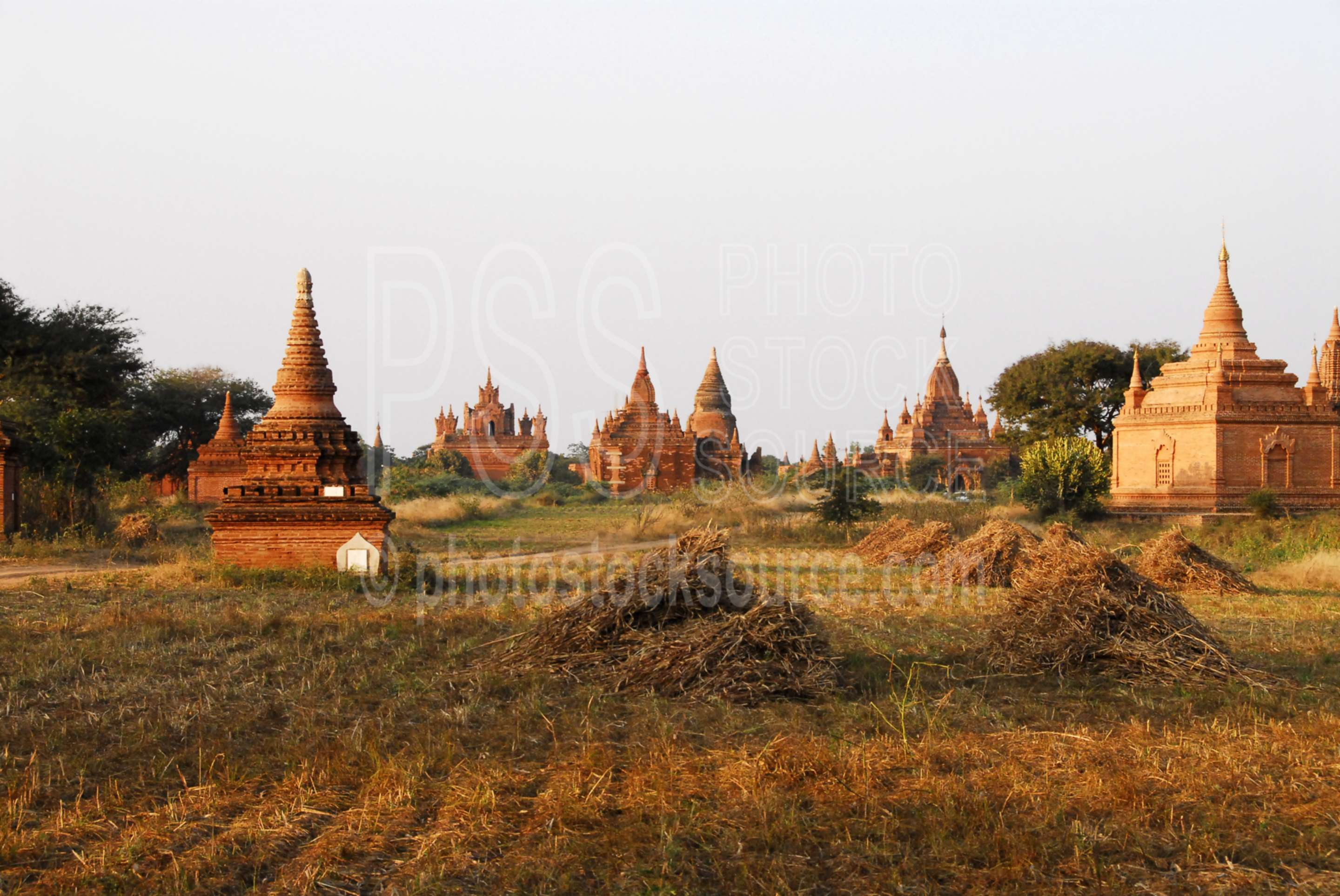 Bagan Temples near Sunset,myanmar,paya,temple,religious,buddhism,religion,stupas,pagoda,pagodas,sunset,afternoon