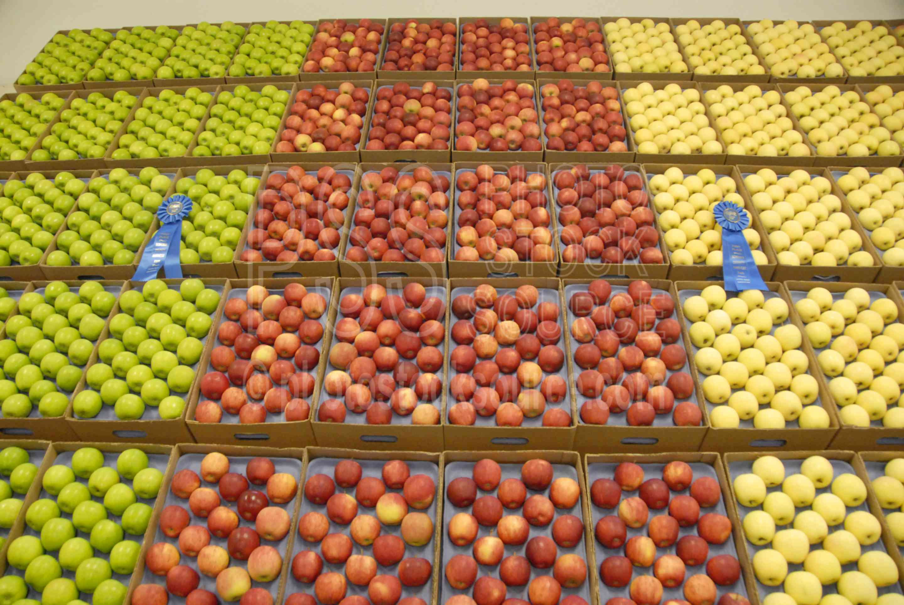 Apple Display,fair,festival,apples,contest,fruit,food,produce,cases,gala,granny smith,golden delicious,agriculture