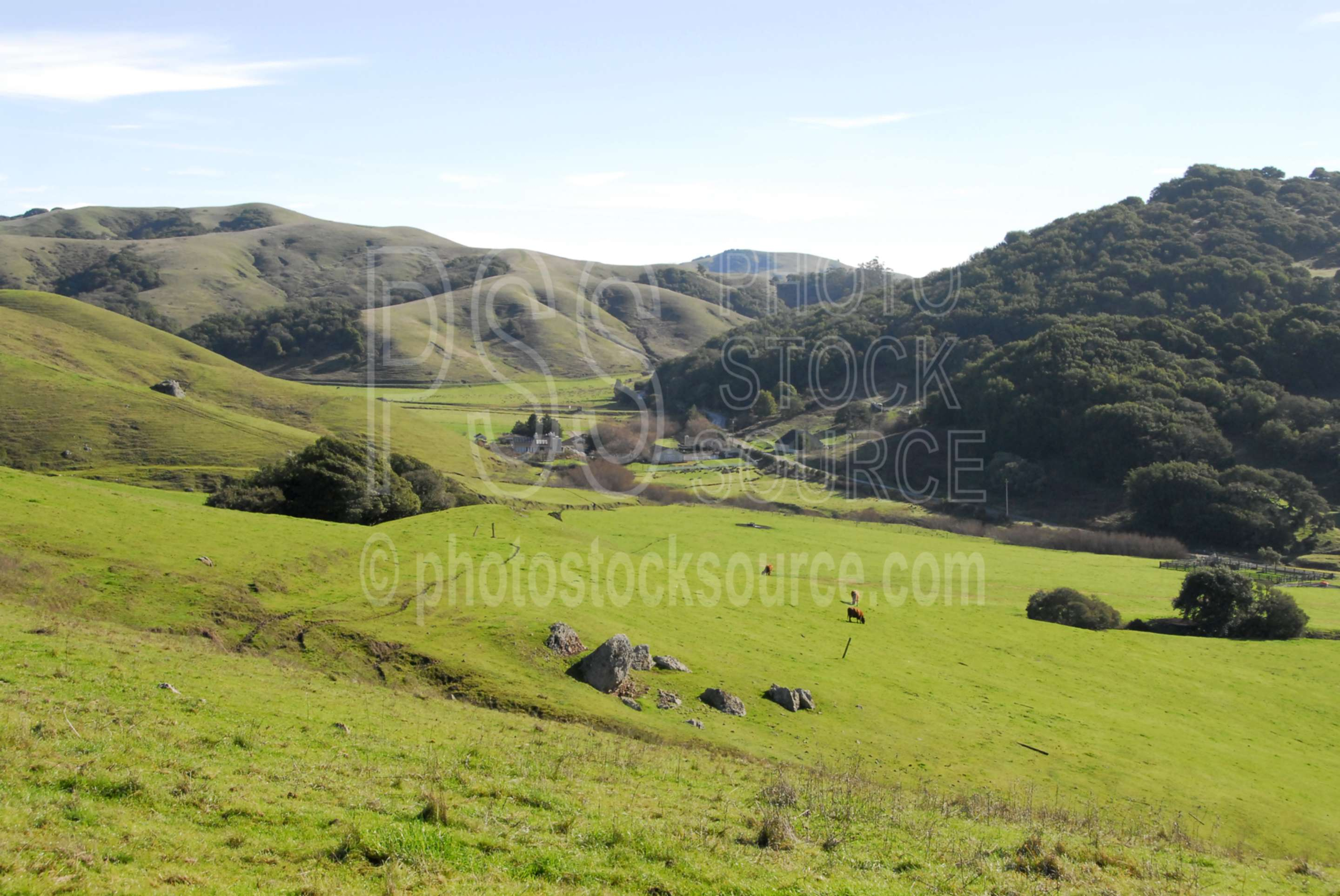 Coastal Hills,rural,farm,ranch,coast range,grass,fields,farmland,hills,green,farms