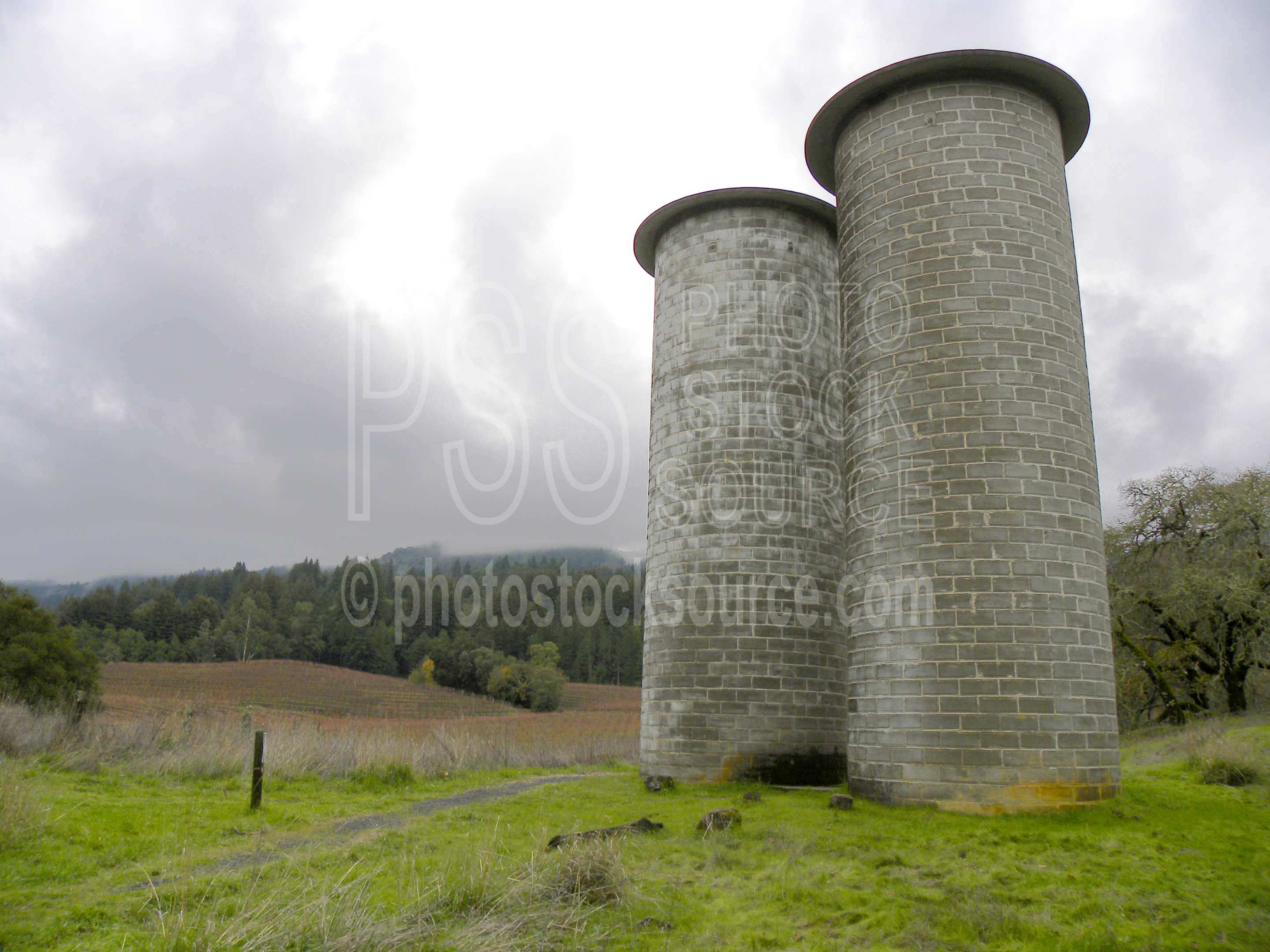 Cement Silos,silo,silage,feed,feeding,farm animals,farming