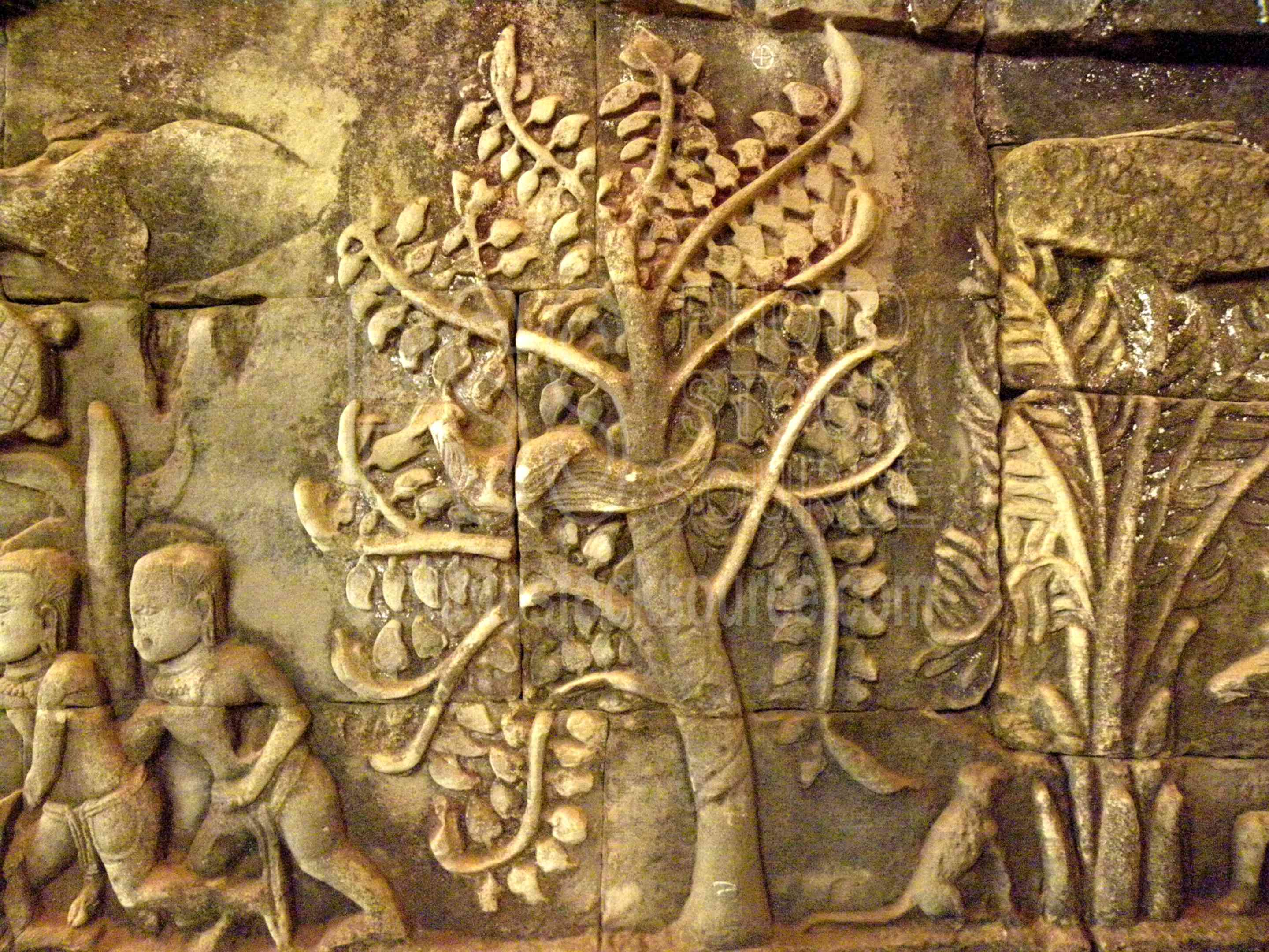 Photo of tree life bas relief by stock source
