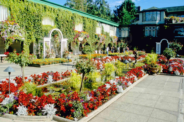 Italian Garden,flower,plants