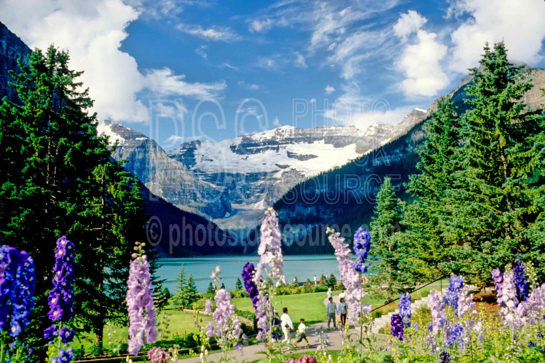 Lake Louise,chateau lake louise,chateau,glacier,mountain,lakes rivers