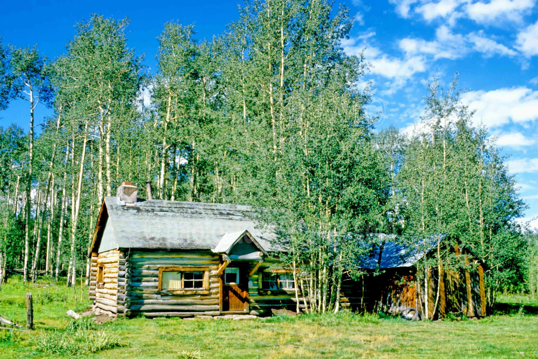 Cabin in Aspens,aspen tree,cabin,usas