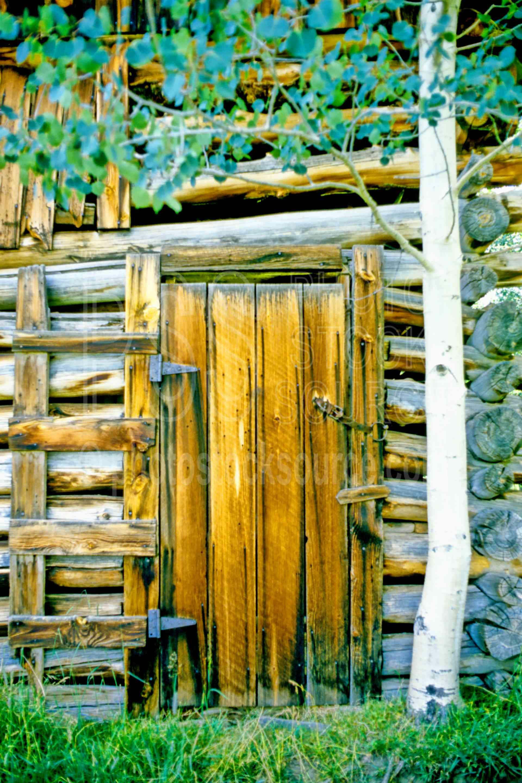 Cabin Door,aspen tree,cabin,door,usas