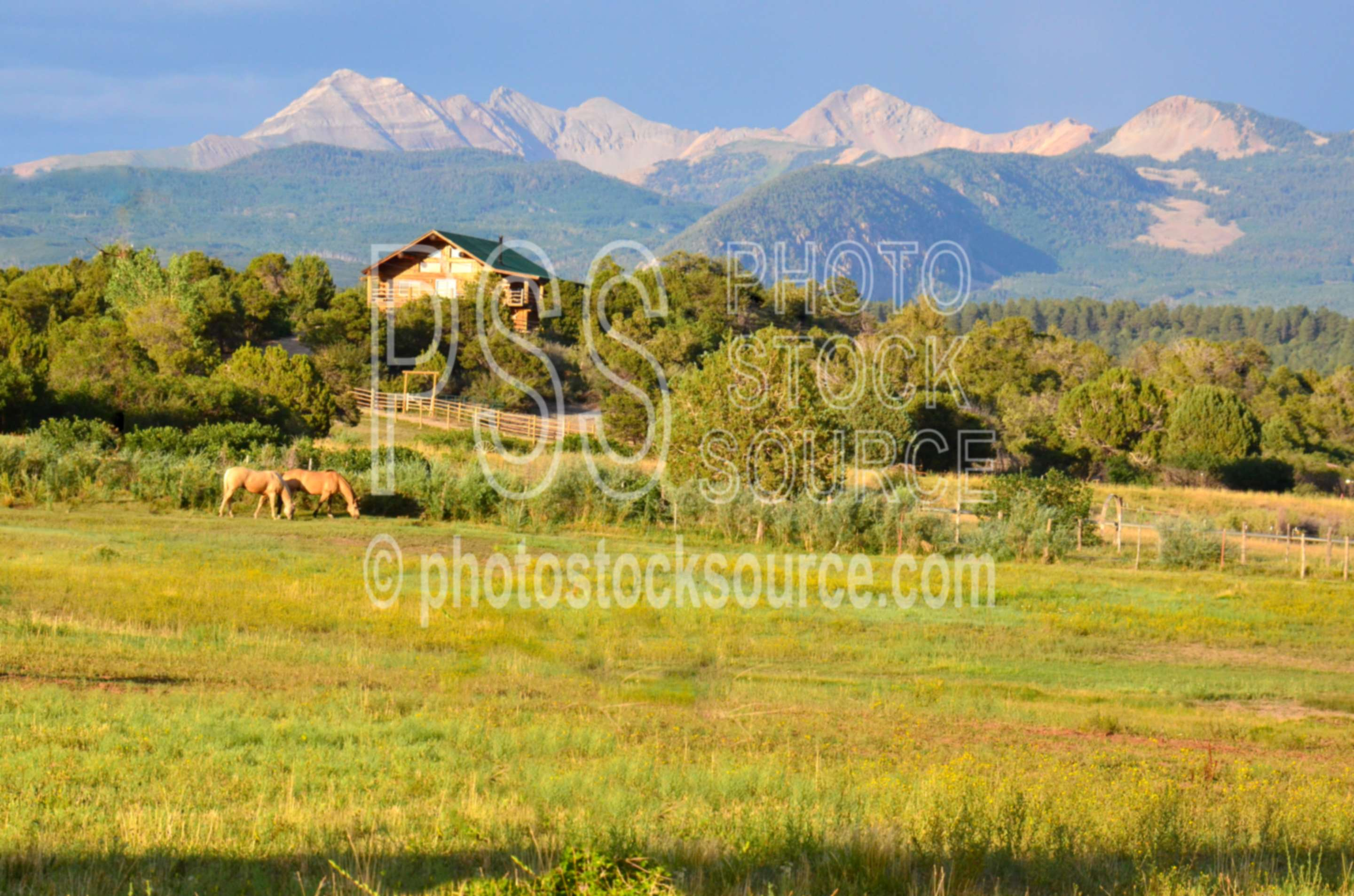 La Platas and Horses,mountains,horses,sunset,la platas