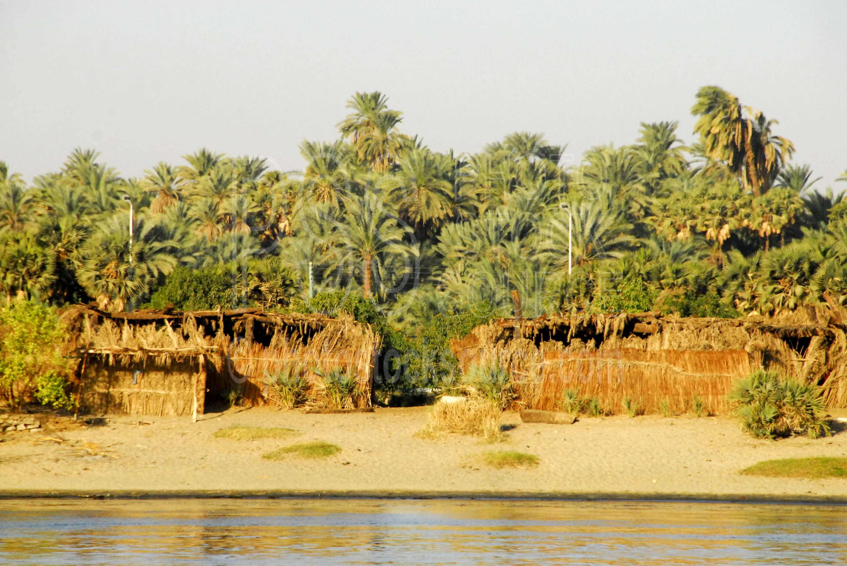 Grass House on Nile River,nile,nile river,house,palm,palm trees,lakes rivers