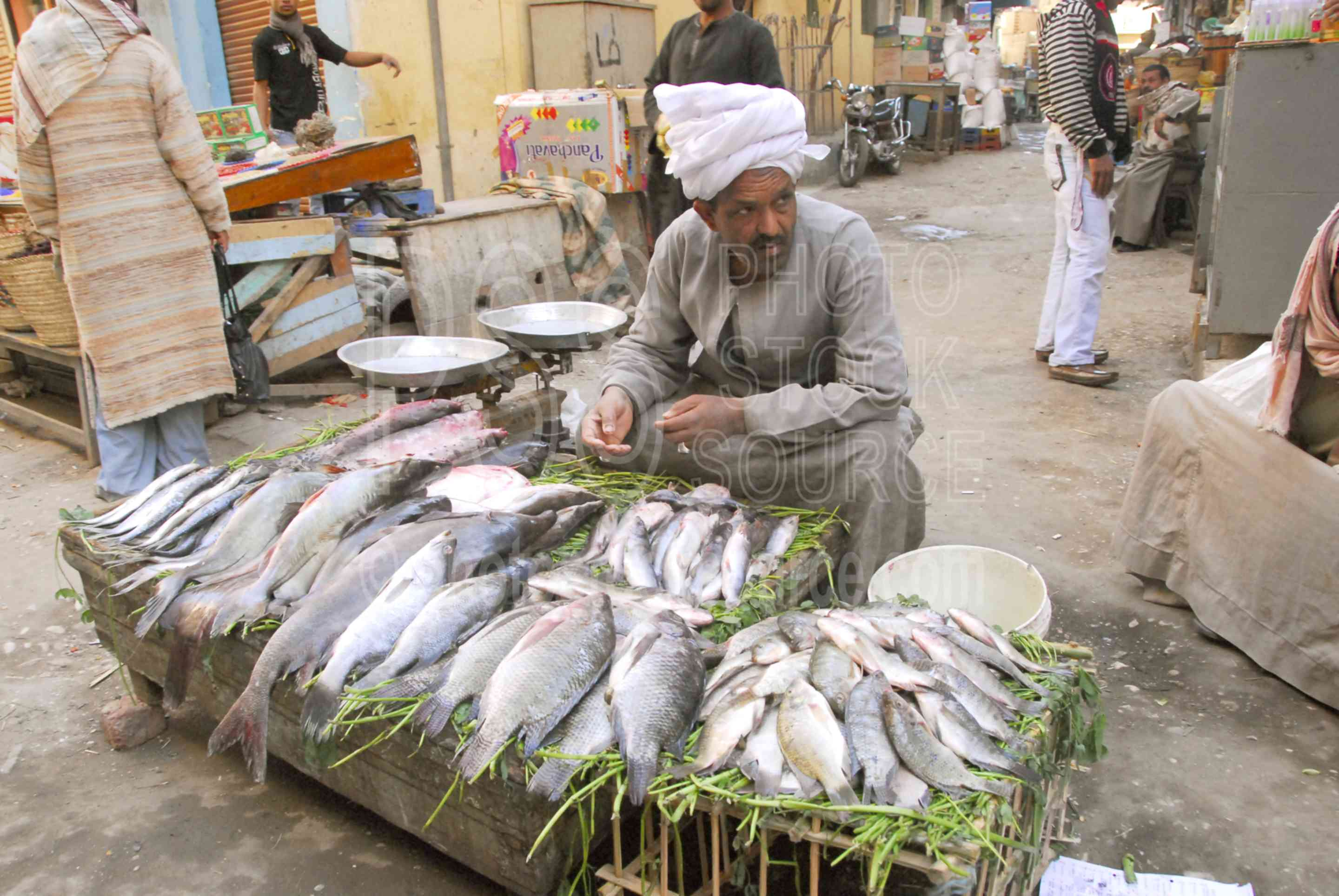 Photo of fish seller by photo stock source market luxor for River fish market