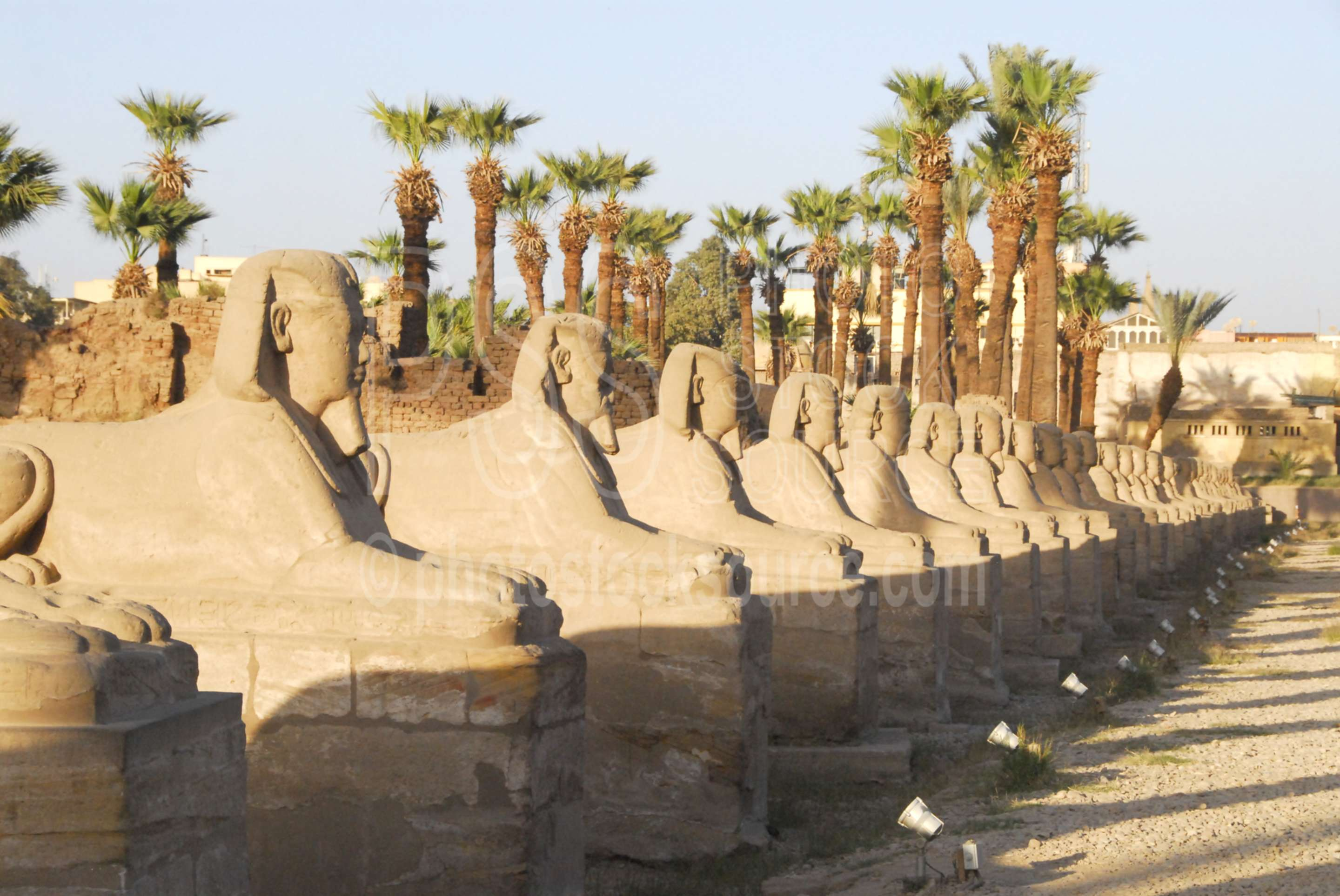 Avenue of the Sphinxes,temple,sphinx,statues,sacred way,architecture,temples