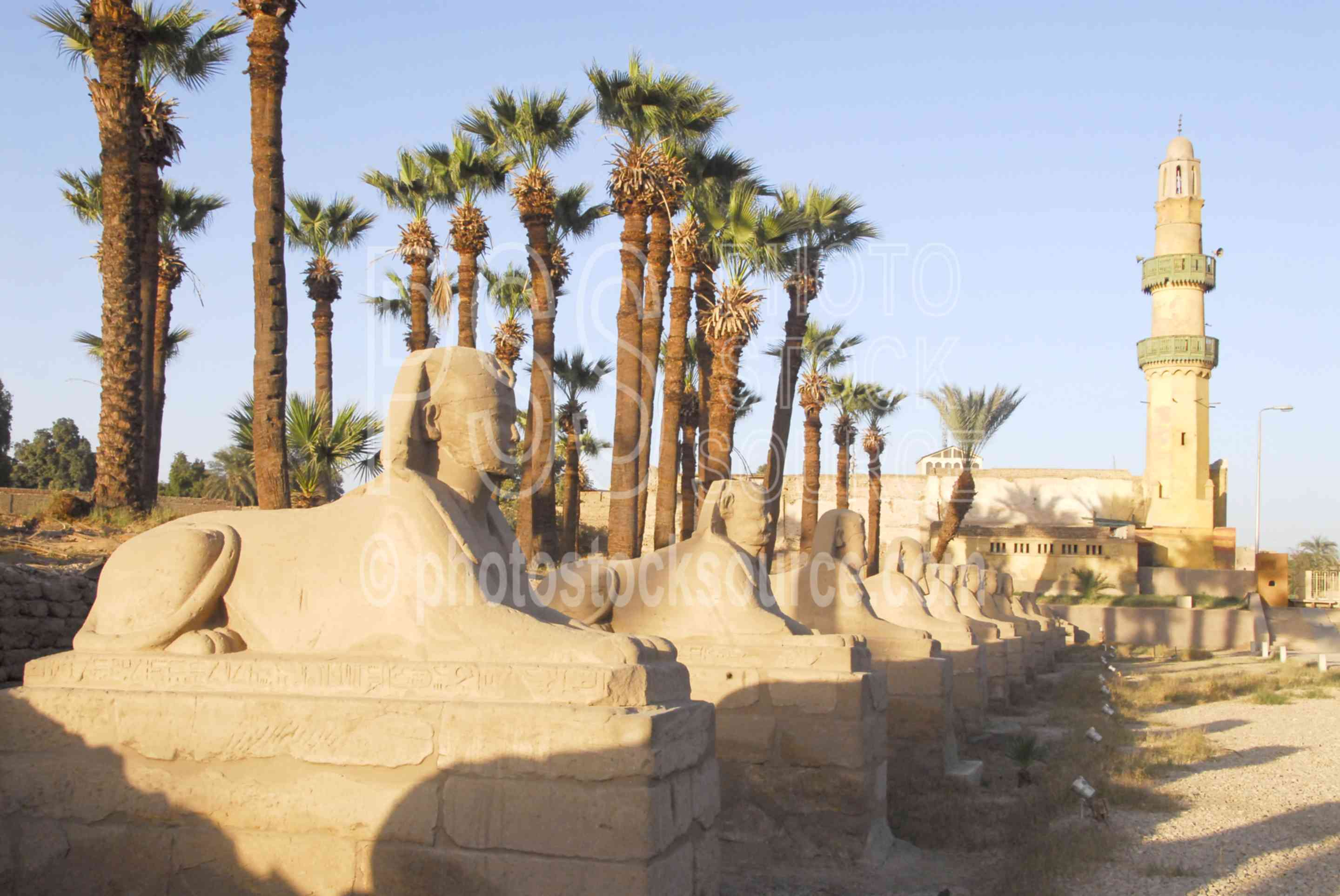 Avenue of the Sphinxes,temple,sphinx,statues,sacred way,mosque,architecture,temples