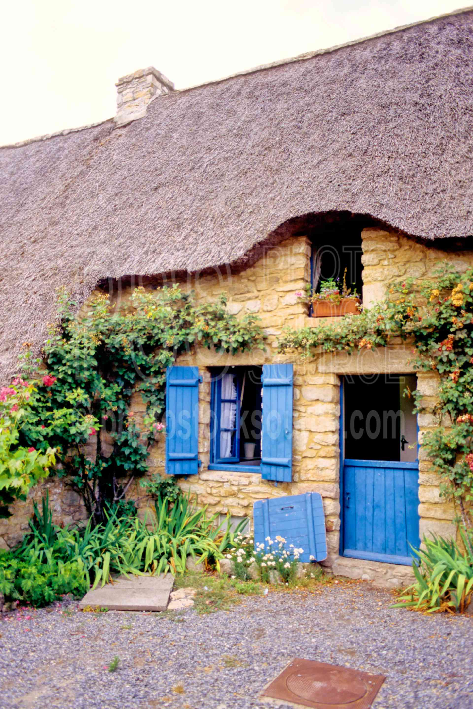 Thatched Roof House,europe,house,natural park of briere,thatched roof