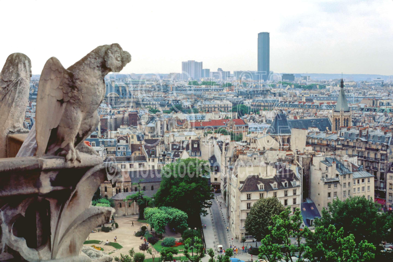 Notre Dam Gargoyle,europe,gargoyle,notre dam,statue