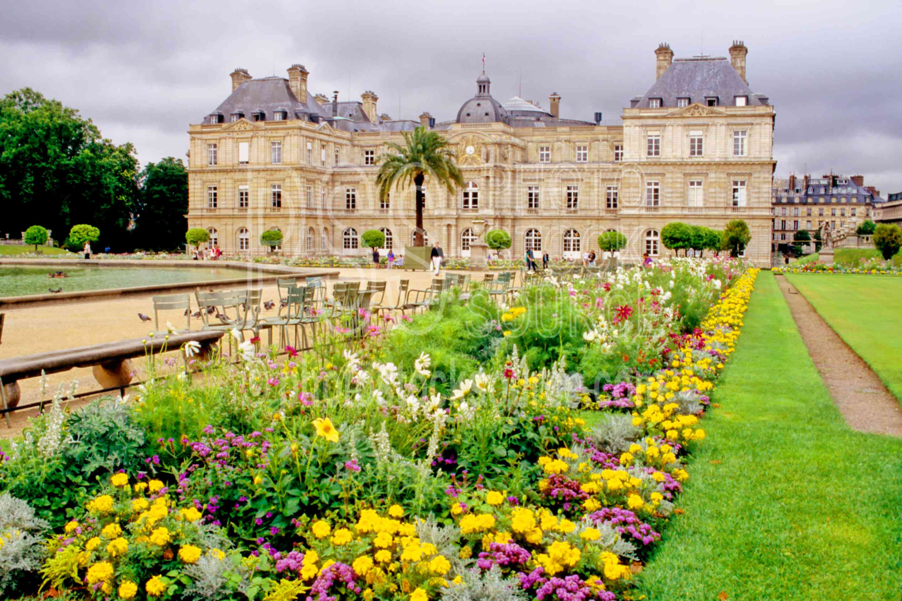 Photo Of Luxembourg Gardens By Photo Stock Source Flower