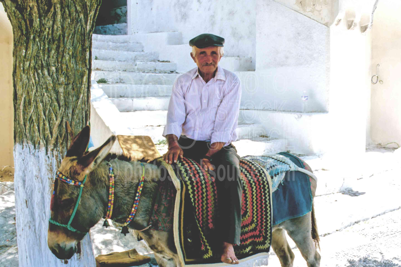 Man and Donkey,animal,donkey,mans
