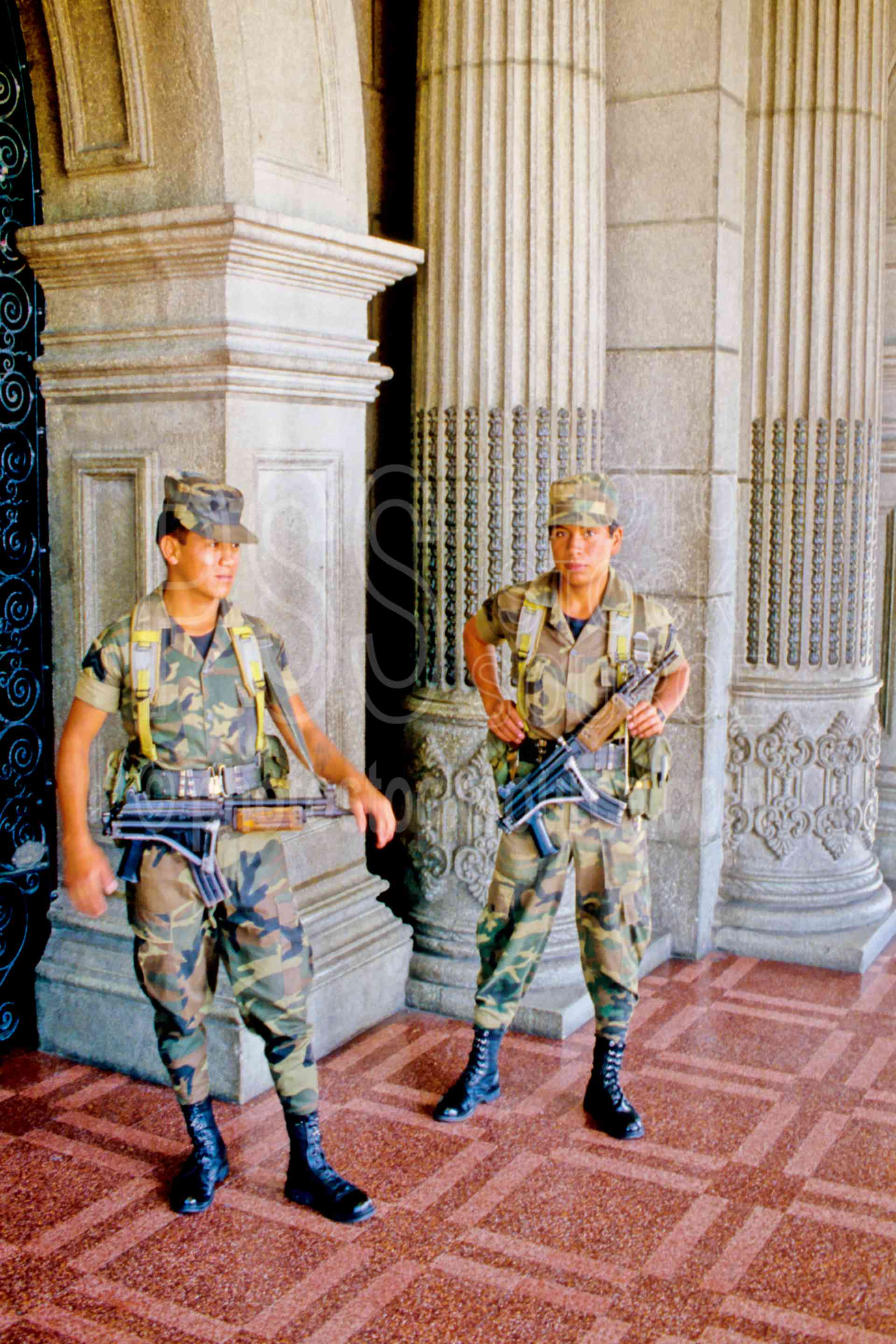 Armed Guards,national palace,guns,military,uniform