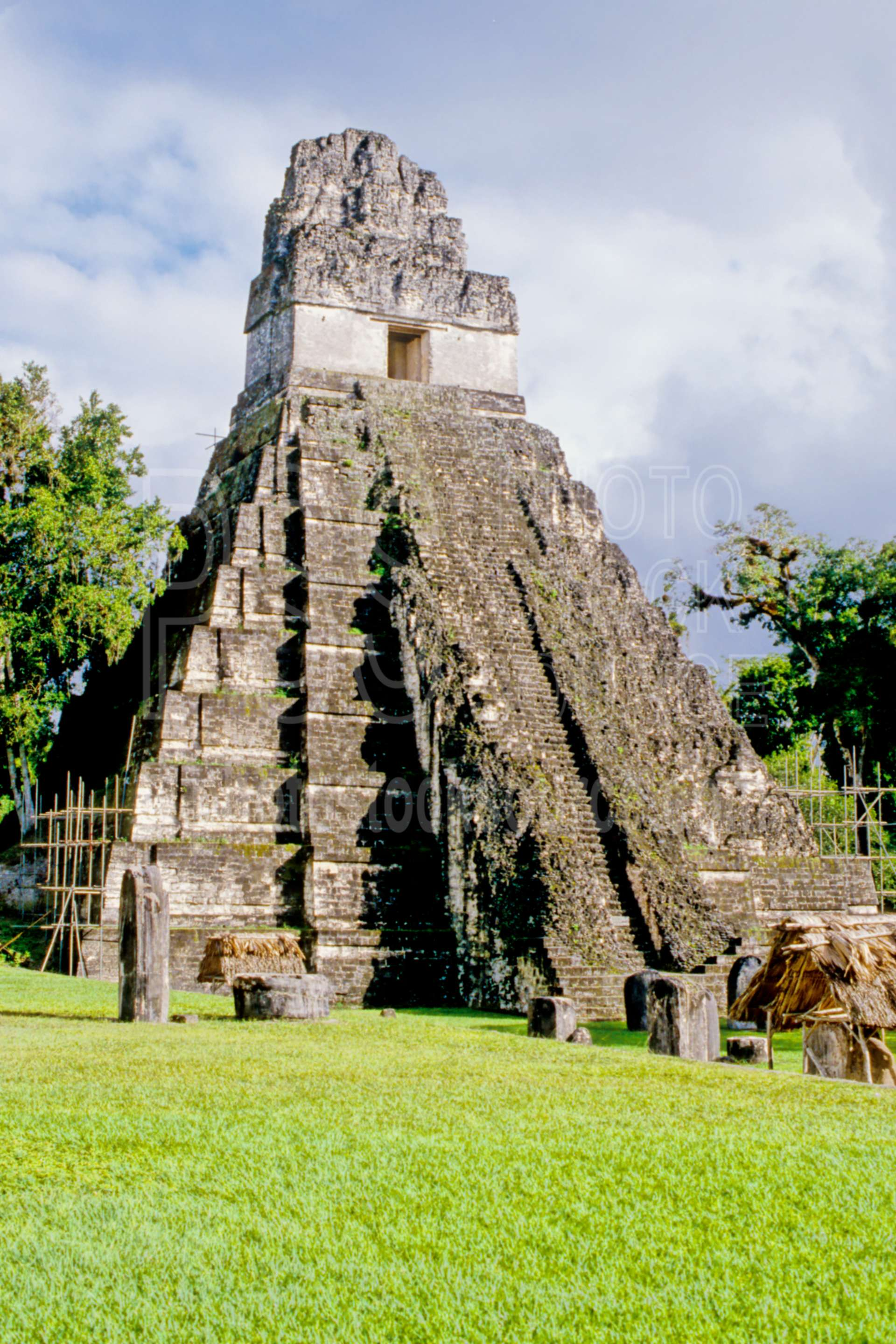 Temple I,jungle,mayan,pyramid,temple,temples