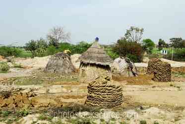 Photo of Round Huts and Dung Piles