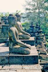 Photo of Buddhas