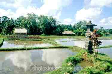 Photo of Rice Field Shrine