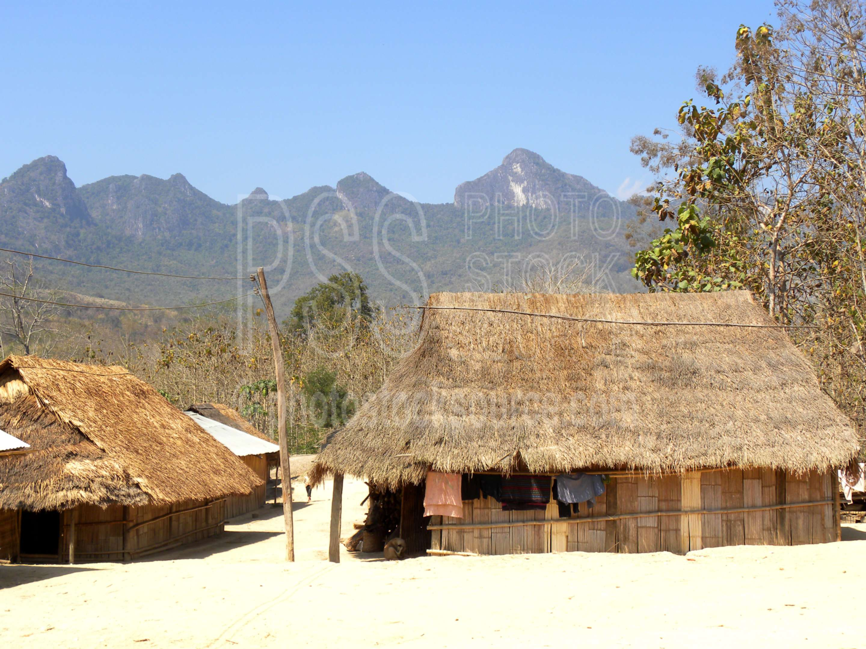 Village Houses,house,dwelling,grass,bamboo,natural,thatched,roof,hut
