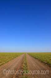 Gobi Road Track