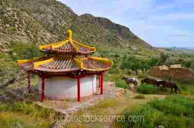 Dunchuur Maani Temple Horses