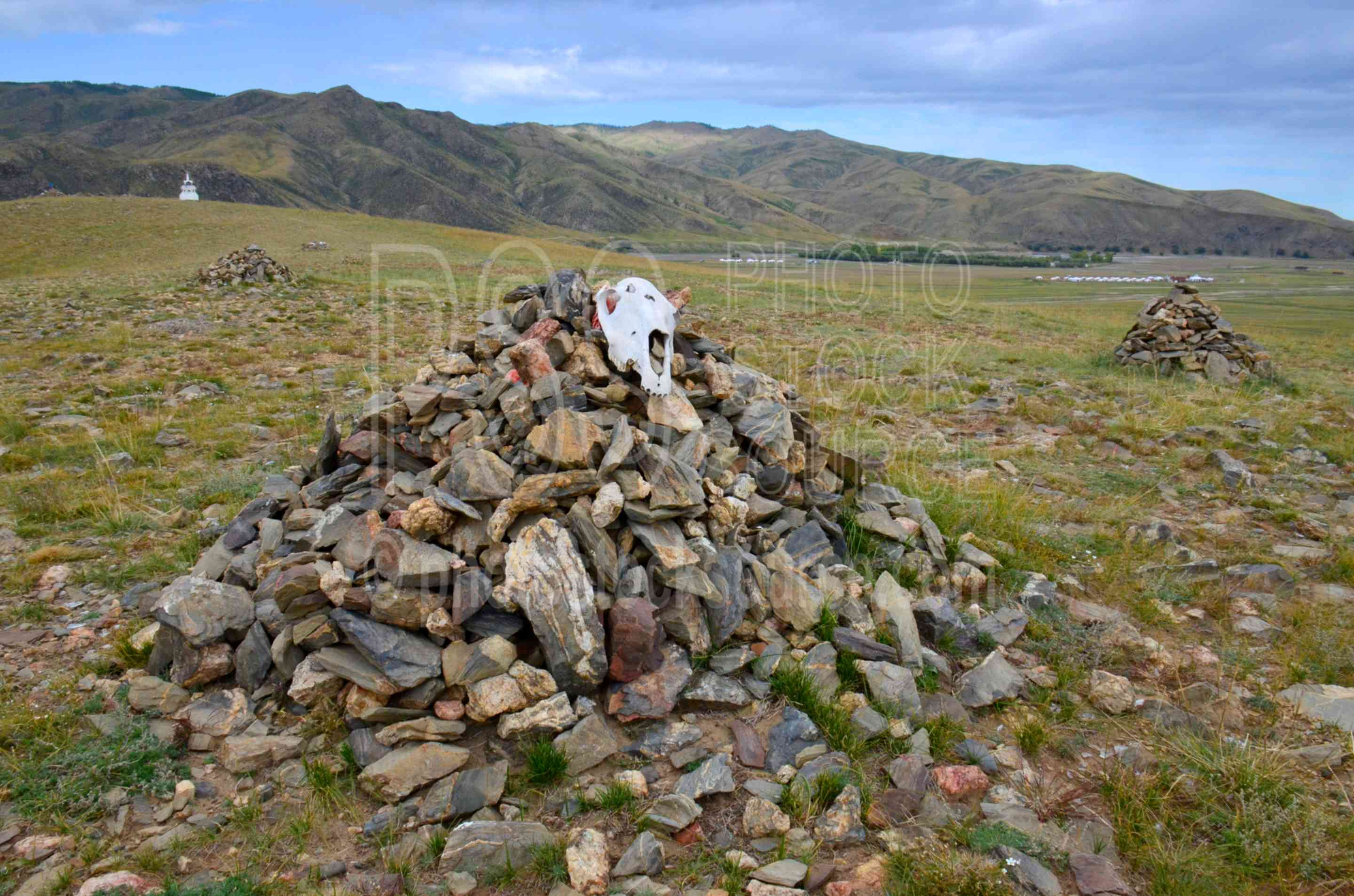 Ovoo with Cow Skulls,viewpoint,ovoo,skulls,bones,cow skulls