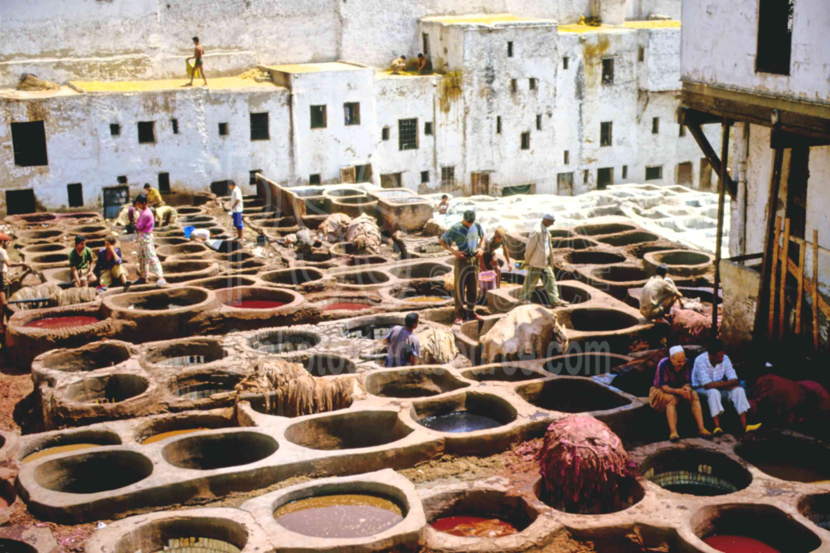 The Tannery,fezs,skins,tannery,work,worker,fezs
