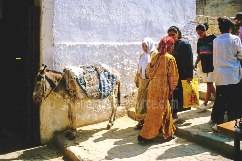 In the Medina,alley,animal,donkey,fezs,market,street,fezs,morocco markets