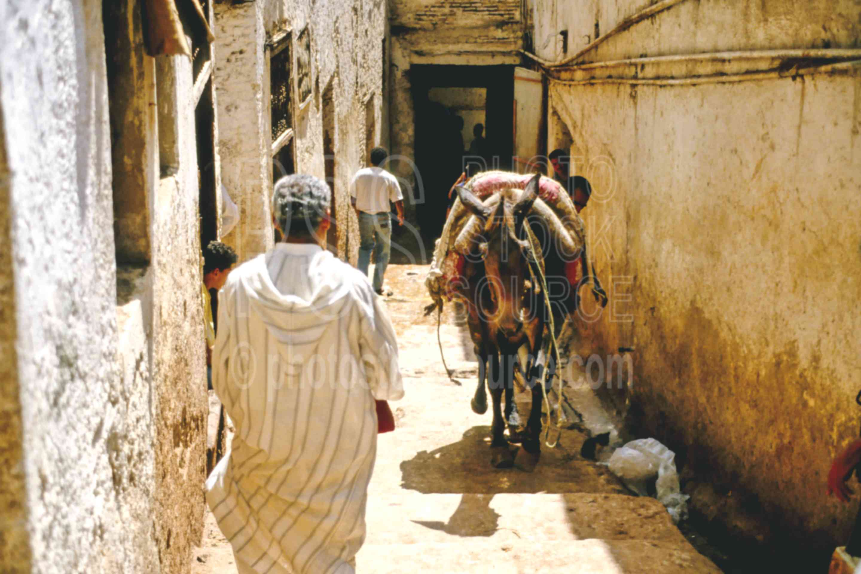 Donkey in Alley,alley,donkey,fezs,market,people,street,morocco markets,animals