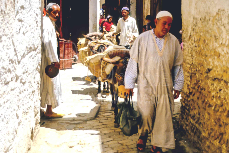 Donkey Train,donkey,fezs,market,medina,people,morocco markets,animals