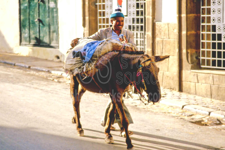 Man and his Donkey,donkey,fezs,market,medina,people,street,fezs,animals