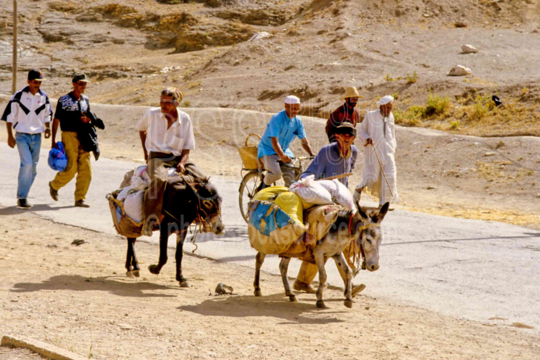 Men on Donkeys,mens,donkey,beast of burden