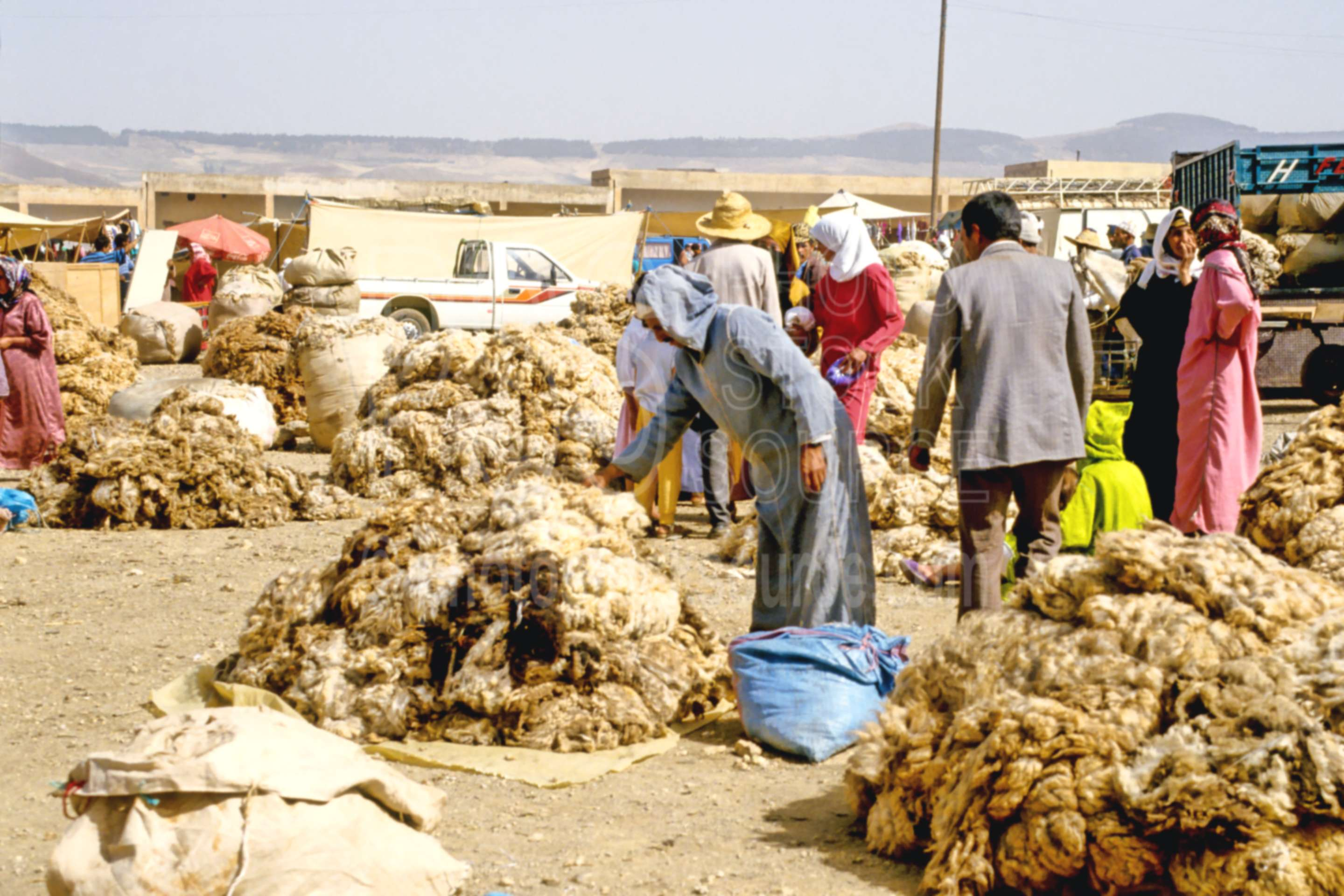 Berber Wool Market,animal,market,mens,sell,sheep,wool,morocco markets