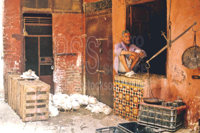 Chicken Seller,chicken,mans,market,medina,seller,vendor,work,worker,morocco markets