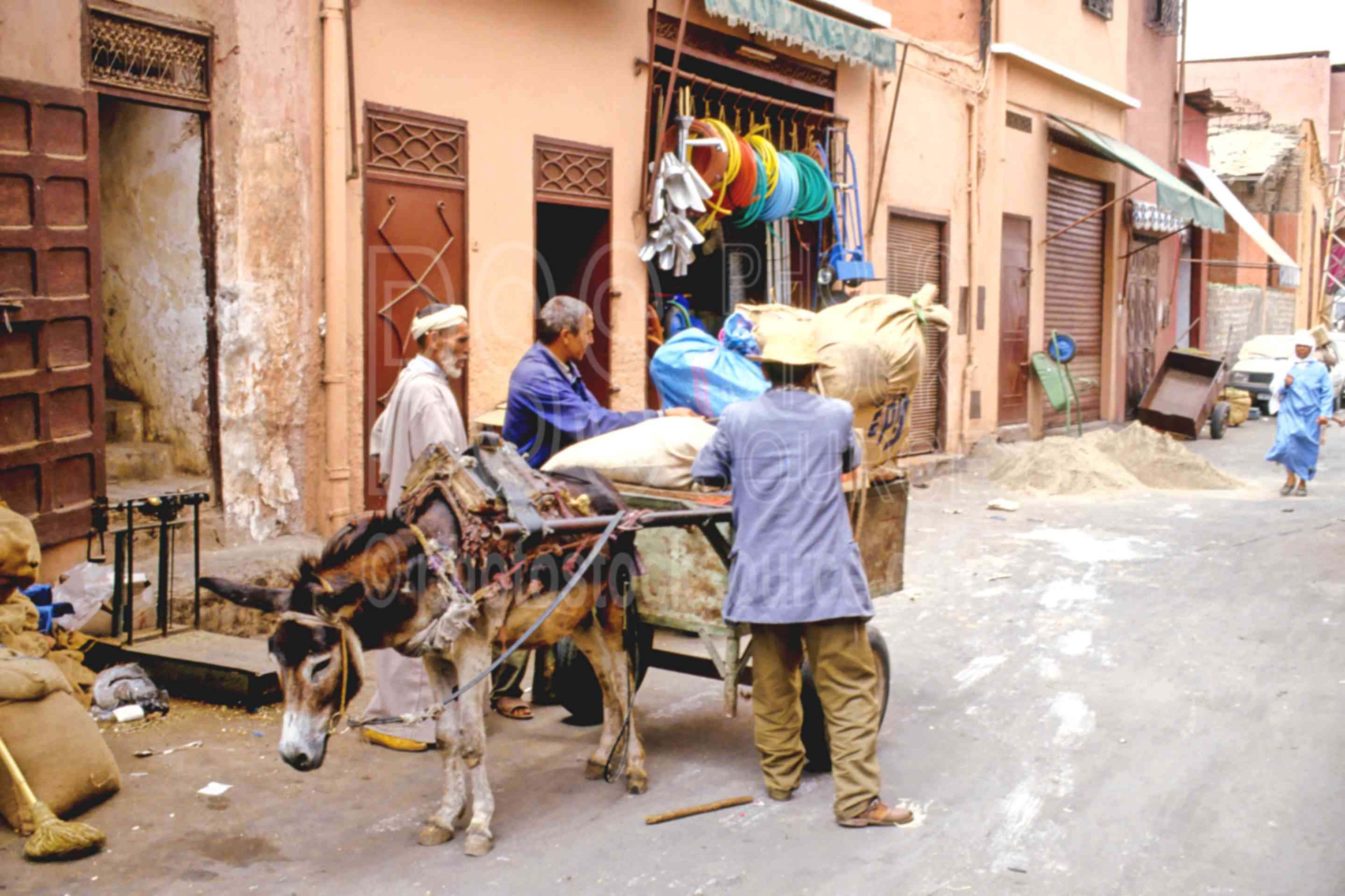 Men and Donkey,animal,donkey,market,medina,mens,work,worker,morocco markets
