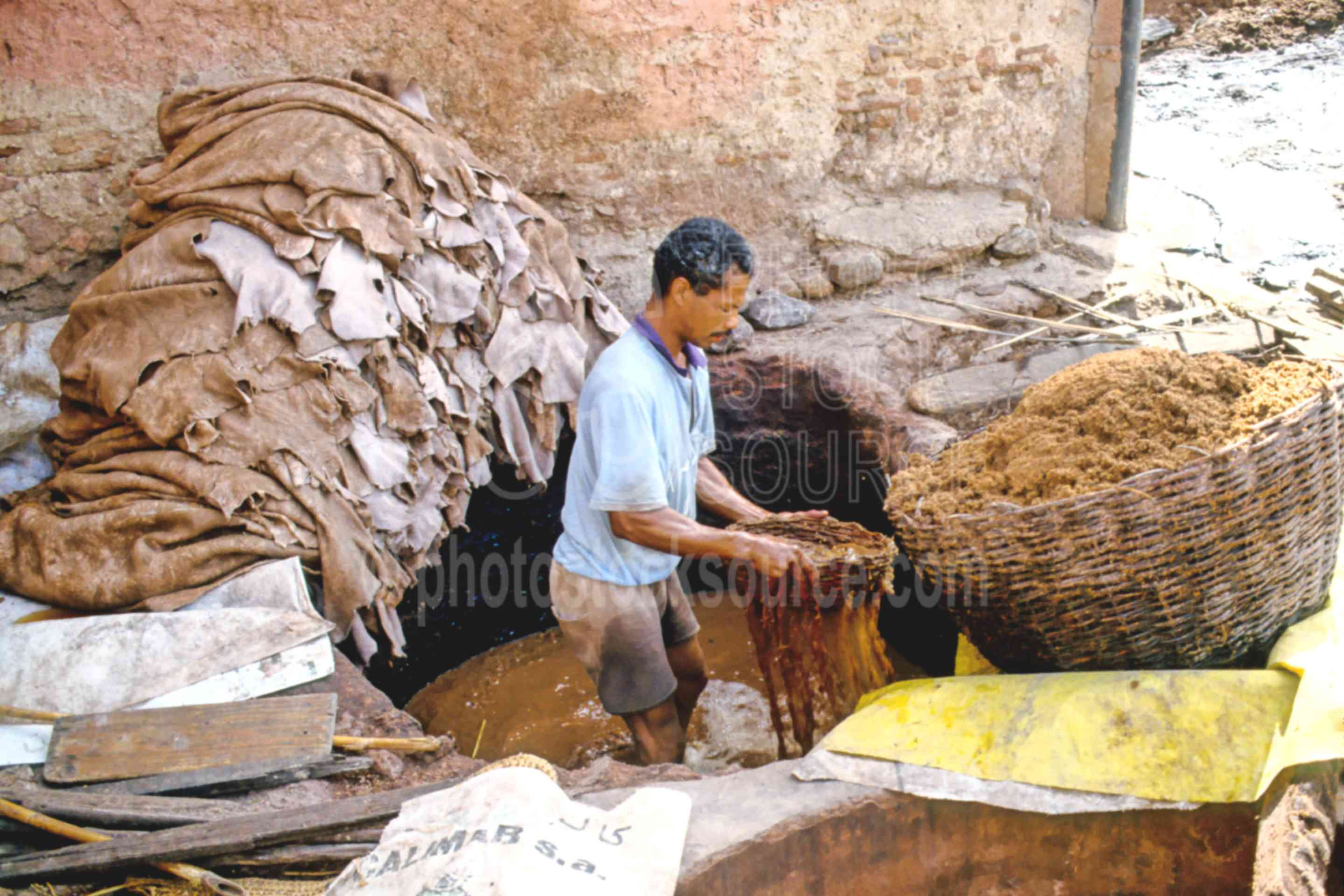 Treating Skins in Tannery,skin,tannery