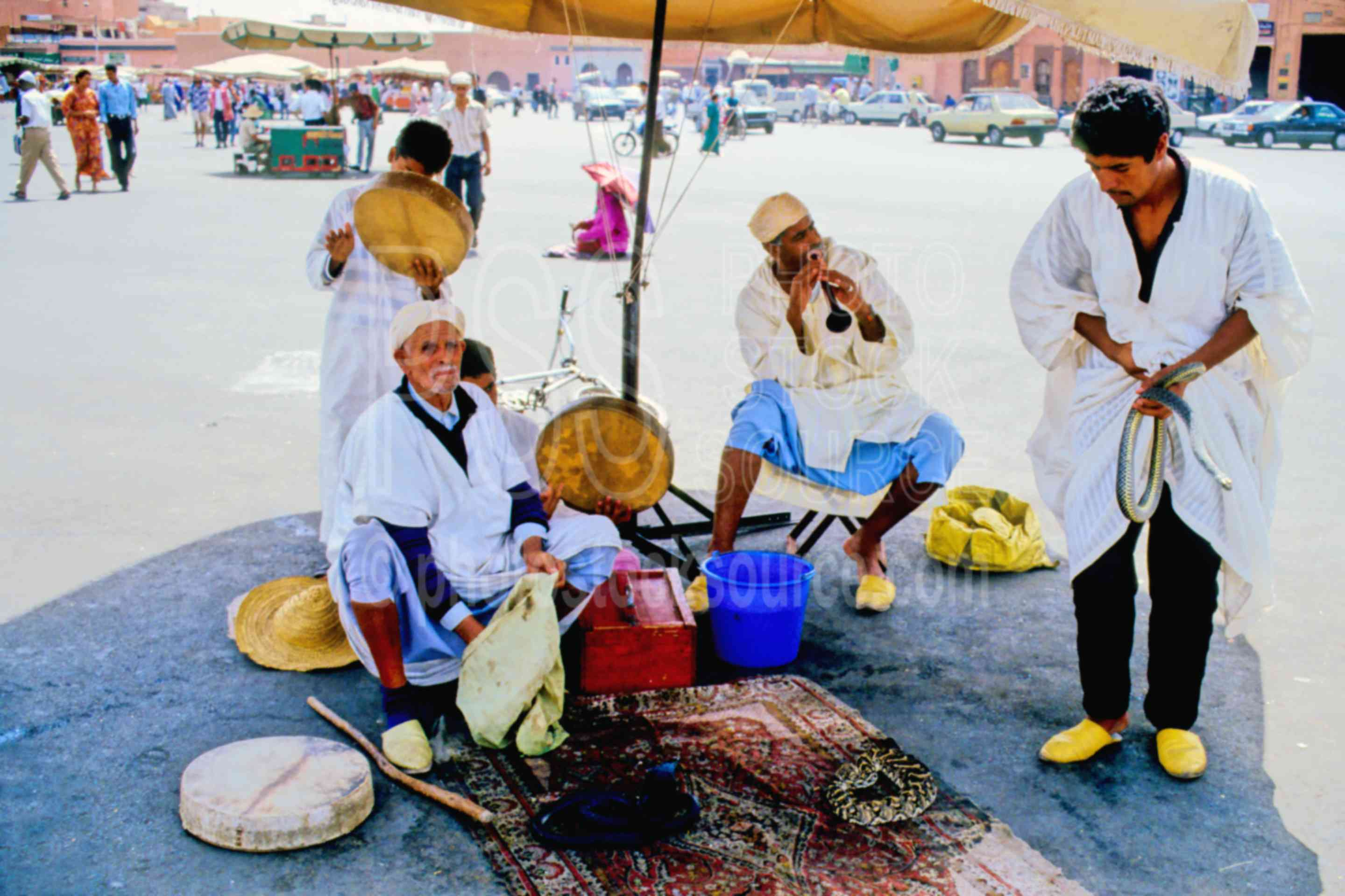 Snake Charmers,animal,snake,work,worker,morocco markets