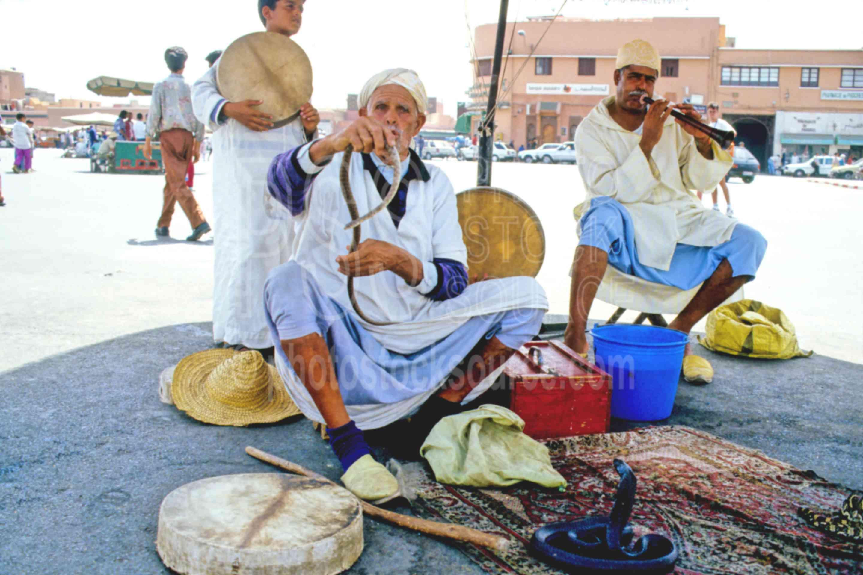 Snake Charmers,animal,snake,snake charmer,work,worker,morocco markets