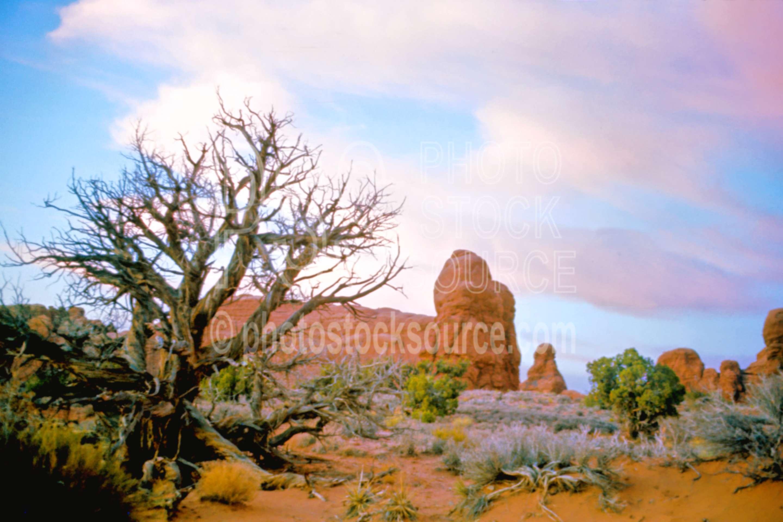 Pillars at Sunset,pillar,sunset,usas,national park,nature,national parks