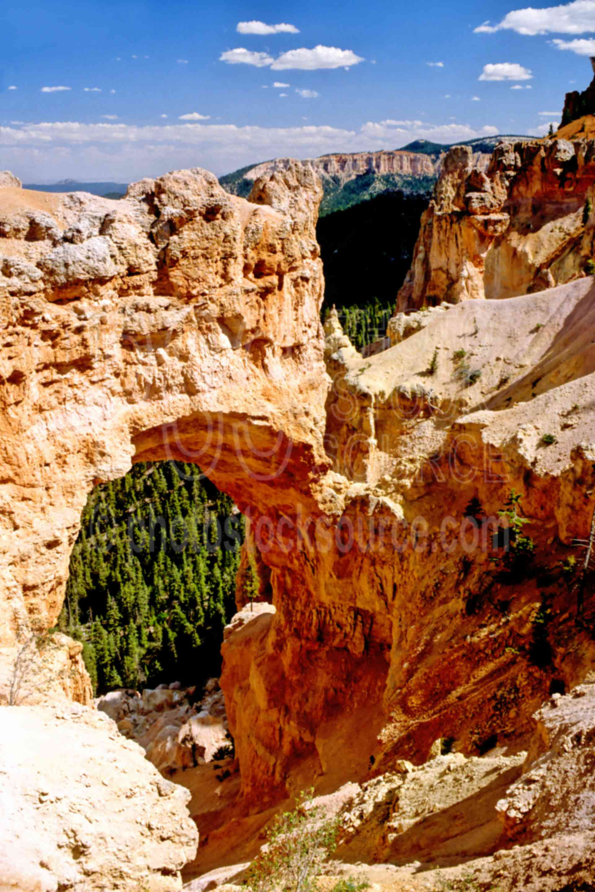 Bryce Arch,arch,canyon,usas,national park,nature,national parks