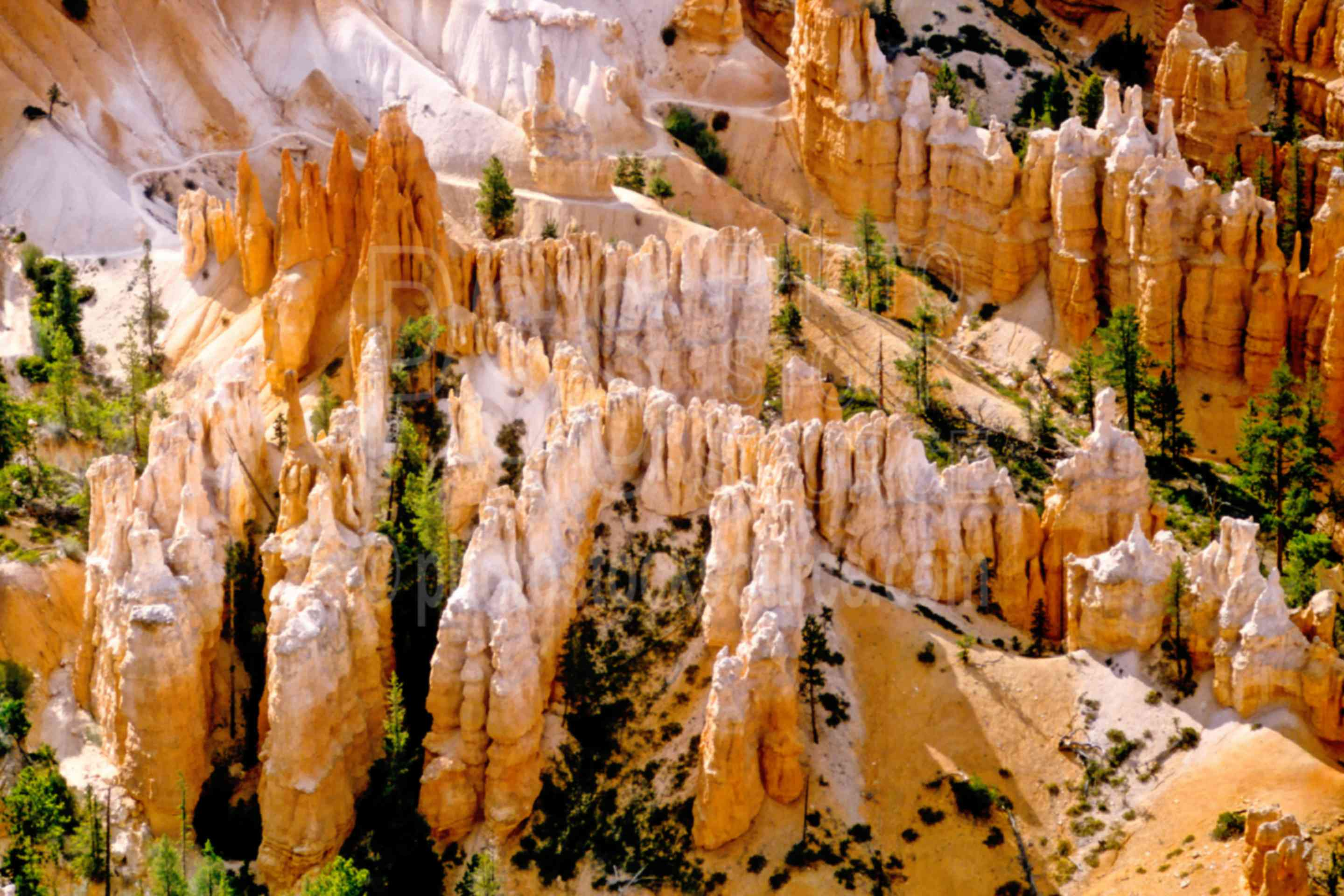 Canyon View,canyon,usas,national park,nature,national parks