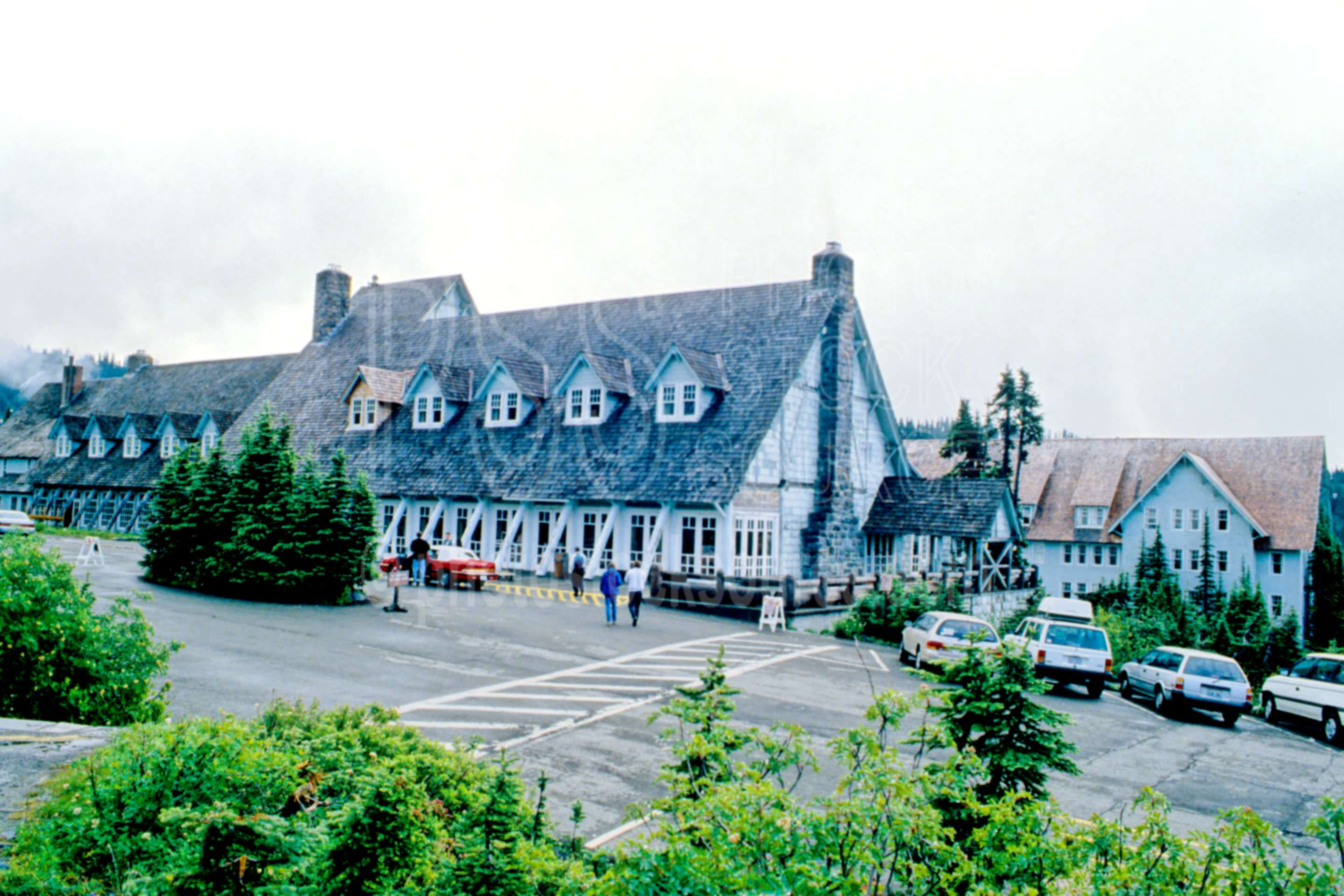 Paradise Inn,lodge,usas,national park,nature,national parks