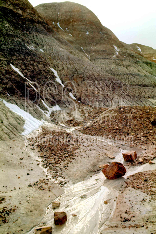 Snow Melting,petrified wood,usas,national park,nature,national parks