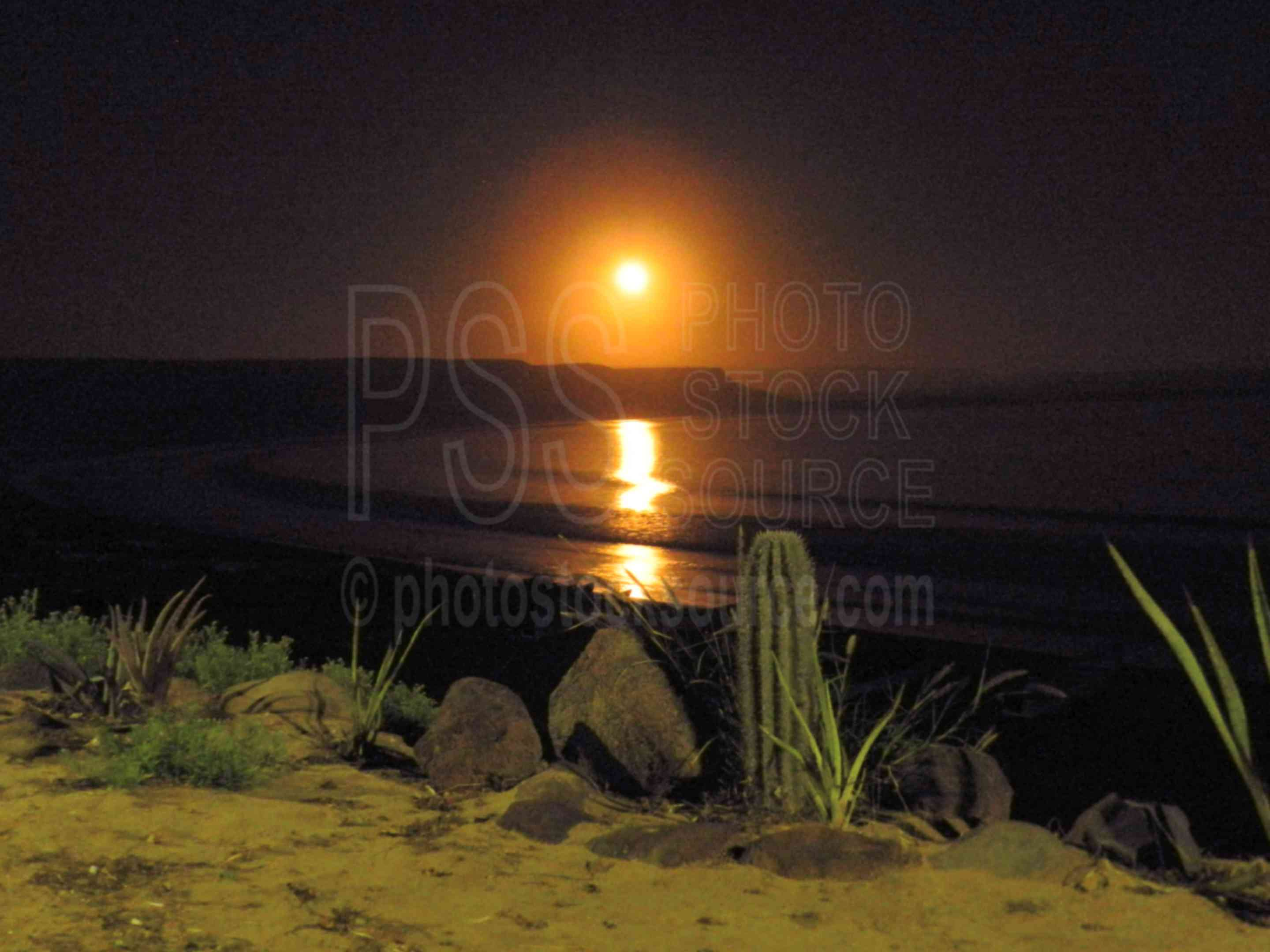 Scorpion Bay Moonrise,moon,moonrise,cactus,ocean,coast,bay,surfers,surfing,waves,sport,rocks