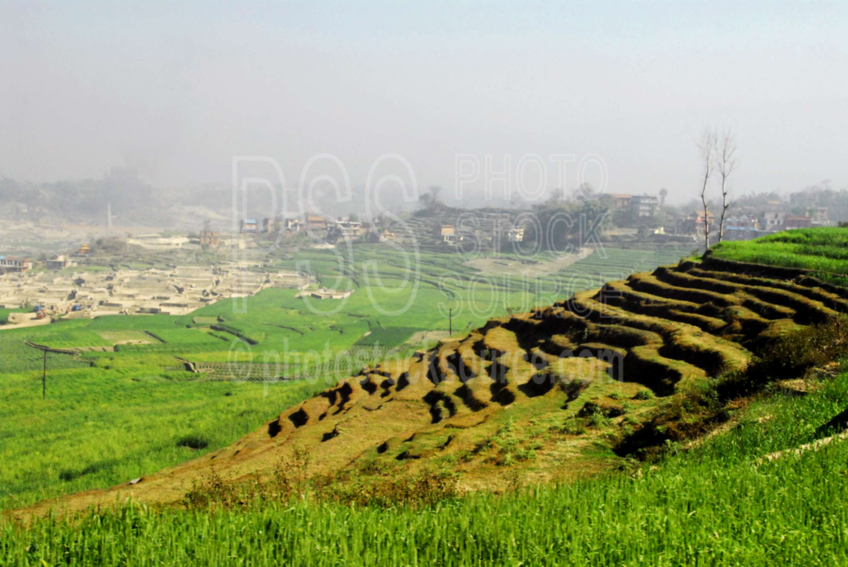 Terraced Fields,bricks,manufacture